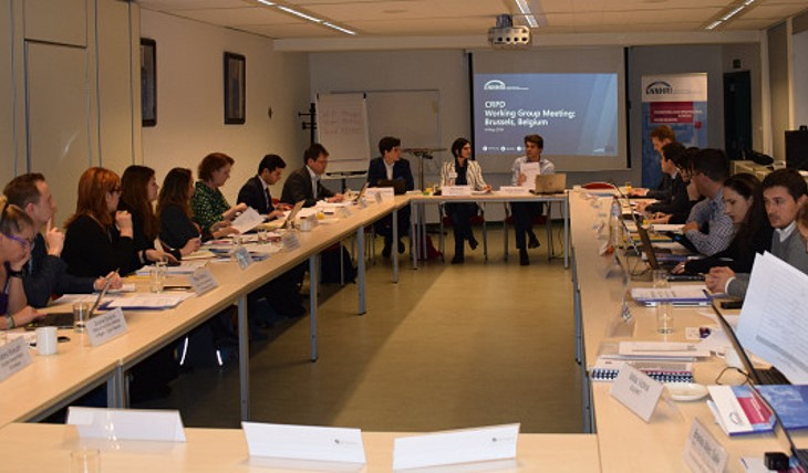 CRPD Working Group