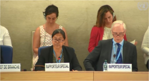UN Special Rapporteur on the human rights of IDPs, Cecilia Jimenez-Damary, speaking at 41st session of UN Human Rights Council