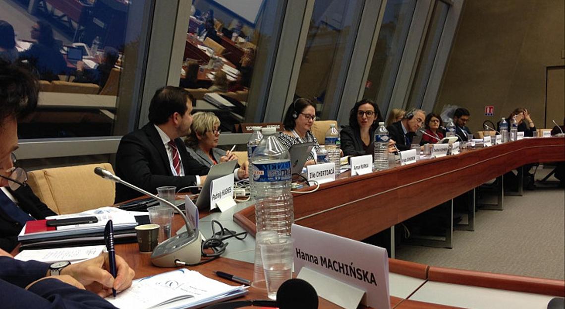 ENNHRI Secretary-General, Debbie Kohner, speaking at CDDH workshop